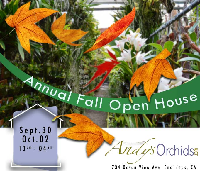"Andys Orchids ""Fall Open house"""