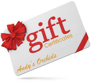 Gift Certificates.